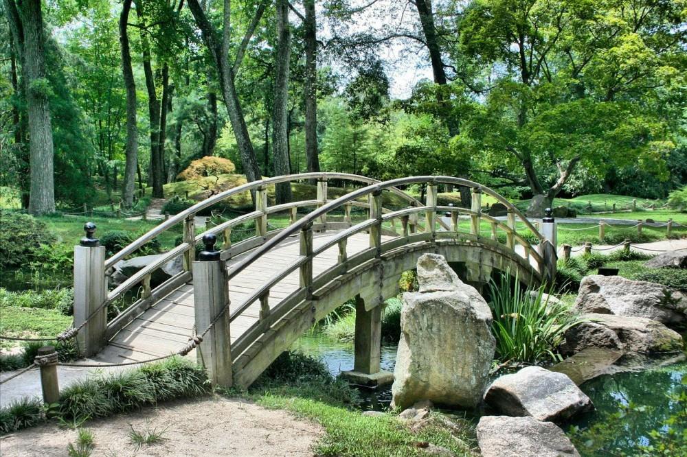 В Киеве планируют увеличить количество зеленых зон