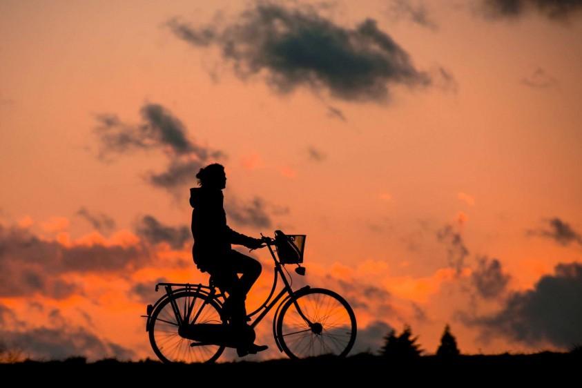Найдите отличия: коммунальщики нанесли новую разметку на велодорожке, которая ведет в столб