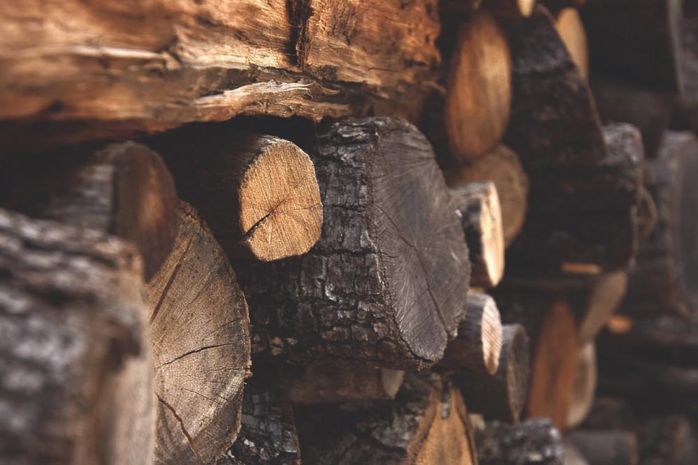 СМИ обнаружили, что IKEA делает мебель из вырубленных карпатских деревьев