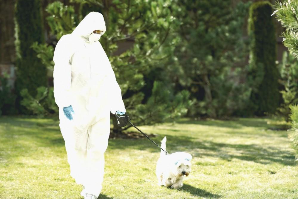 В Украине хотят научить собак искать людей с коронавирусом