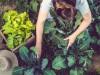 Как питаться без вреда для планеты