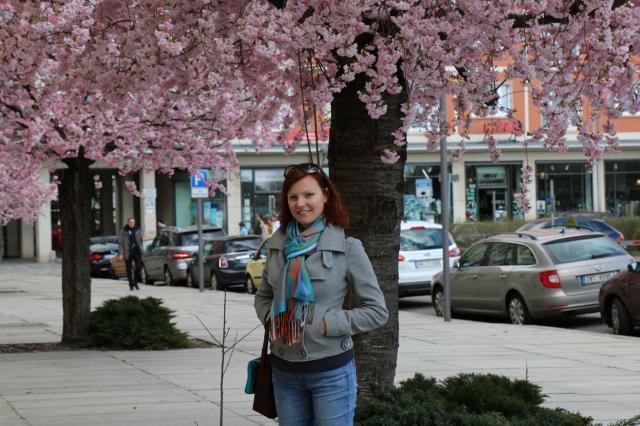 Ожидание – реальность: украинка о жизни в Австрии