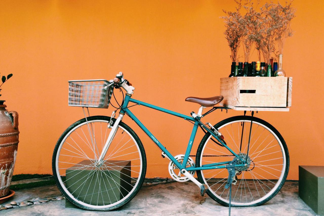 Места и маршруты: где в Киеве взять напрокат велосипед и покататься