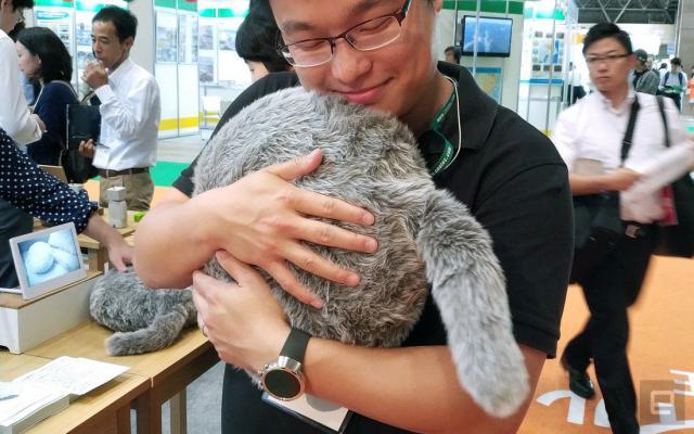 Не линяет и не царапает обои: японцы создали идеального кота