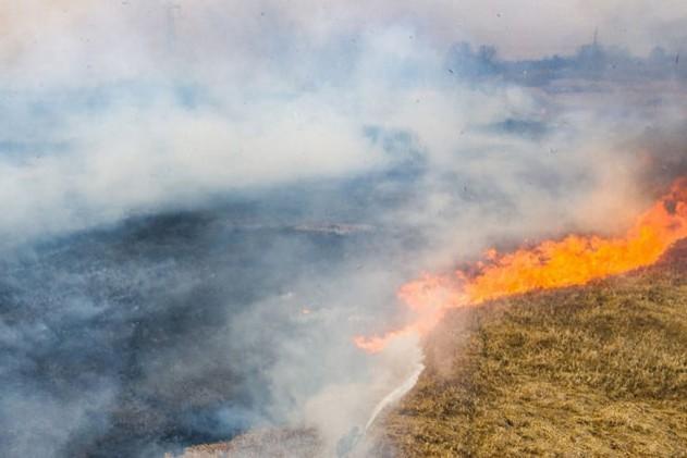 В Чернобыле тысяча спасателей продолжает тушить масштабные лесные пожары