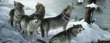 Как Железный Волк зиму спас